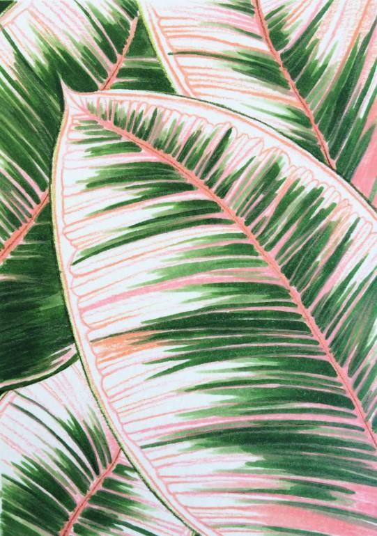 Leaves 1- Pink